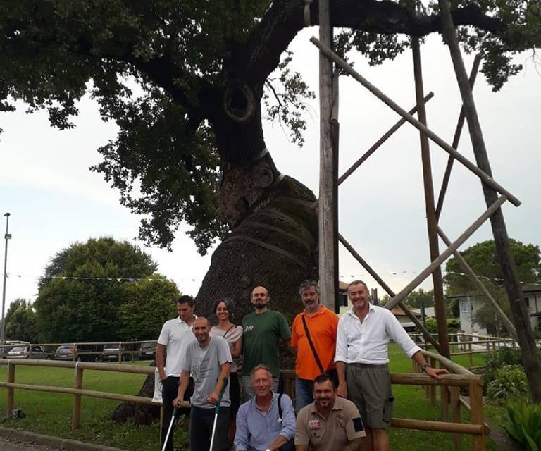 Un albero secolare e una comunità