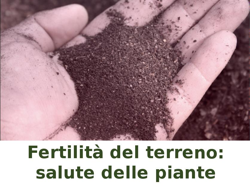Giornata tecnica su Fertilità del terreno e salute delle piante