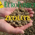 Zeolite chabasite di Europomice