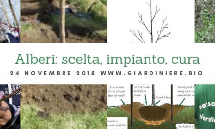 Alberi: scelta, impianto e cura. Giornata tecnica a Varese il 24 novembre