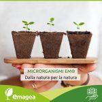 Emagea, prodotti a base di Microrganismi Effettivi
