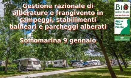 Gestione razionale di alberature in campeggi, spiagge e parcheggi litoranei