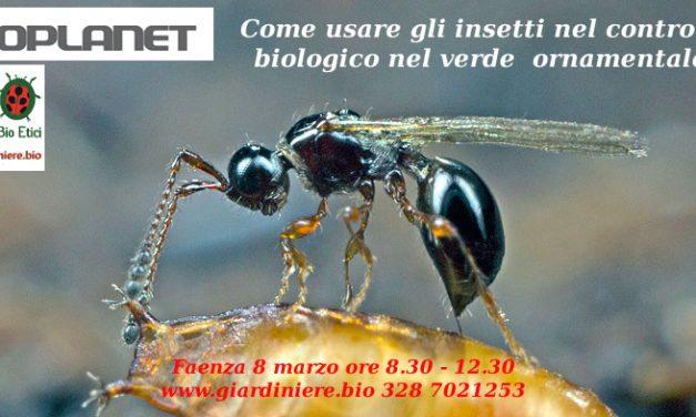 Bioplanet e Giardinieri BioEtici insieme per spiegare micorrize, nematodi, chitosano e insetti utili in giardino