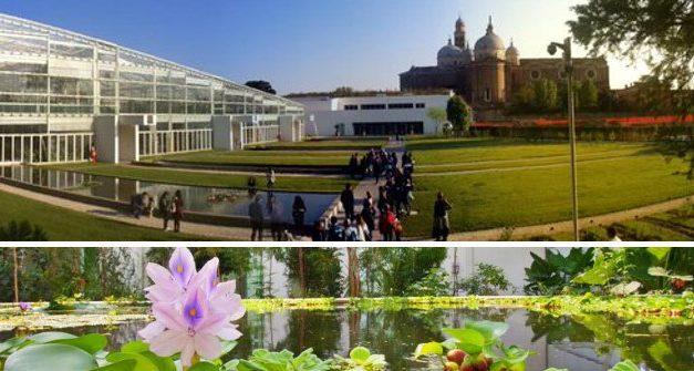 Visita all'orto botanico di Padova con Francesco Badalini