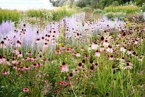 Filippo Fior Organic Gardens Project Giardiniere BioEtico di Selvazzano, Padova
