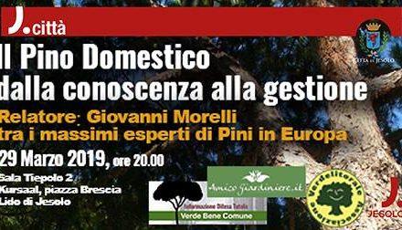 Il Pino Domestico, lezione pubblica del dott. Giovanni Morelli
