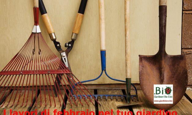 I lavori di febbraio nel tuo giardino
